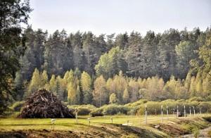 Eestimaa loodus. Foto: Kaja Hiis